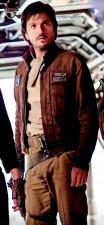 Cassian Andor Brown Jacket